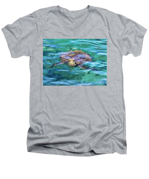 Maui Sea Turtle Men's V-Neck T-Shirt