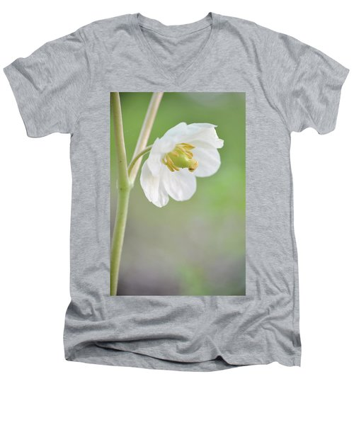 Mayapple Flower Men's V-Neck T-Shirt