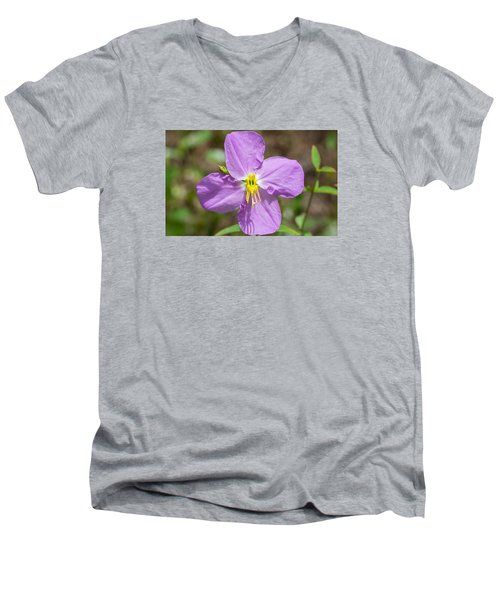 Meadow Beauty Men's V-Neck T-Shirt by Kenneth Albin