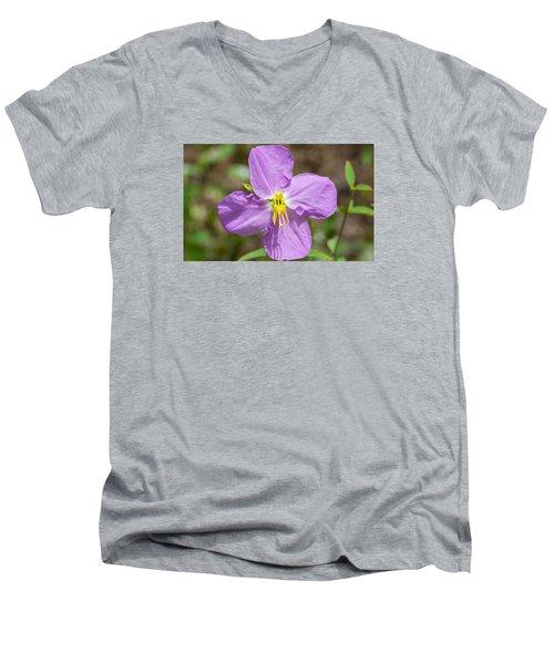 Meadow Beauty Men's V-Neck T-Shirt