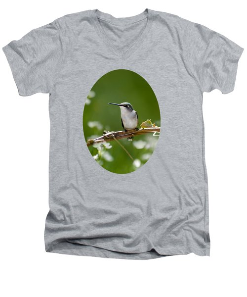 Meadow Hummingbird Men's V-Neck T-Shirt by Christina Rollo
