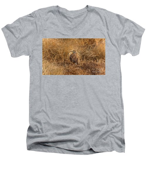 Meadowlark Hiding In Grass Men's V-Neck T-Shirt