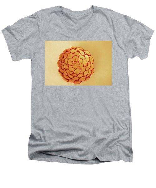 Men's V-Neck T-Shirt featuring the photograph Medium Patches Bowl1 by Itzhak Richter
