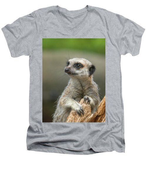 Meerkat Model Men's V-Neck T-Shirt