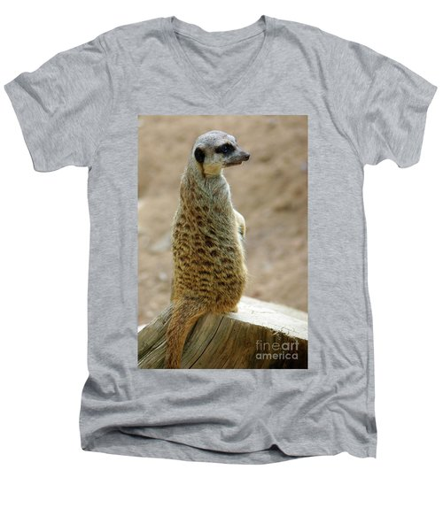 Meerkat Portrait Men's V-Neck T-Shirt