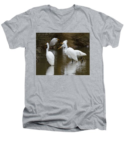 Meeting Of The Egrets Men's V-Neck T-Shirt