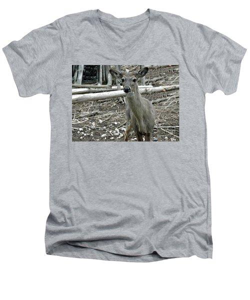 Men's V-Neck T-Shirt featuring the photograph Michigan White Tail Deer by LeeAnn McLaneGoetz McLaneGoetzStudioLLCcom