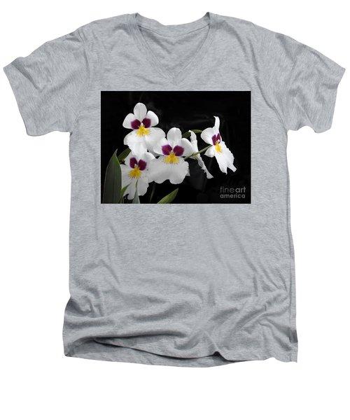 Miltonia Hybrid Orchid Men's V-Neck T-Shirt