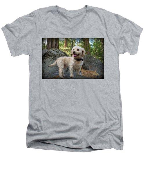 Mini Poodle Men's V-Neck T-Shirt