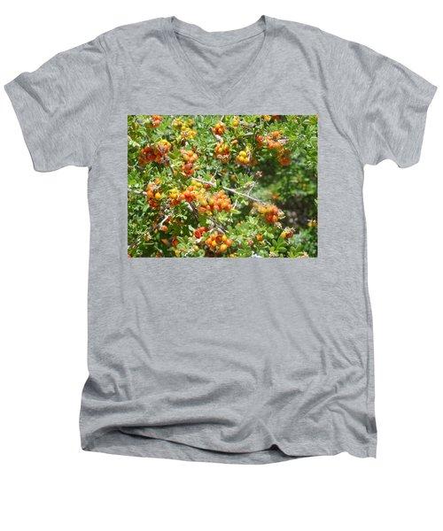 Miniature Fruit Balls Men's V-Neck T-Shirt