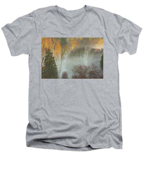Mist In The Park Men's V-Neck T-Shirt