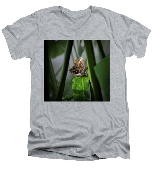 Men's V-Neck T-Shirt featuring the photograph Misty Morning Owl by Karen Wiles