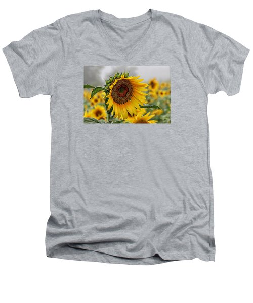 Misty Morning Sunflower Men's V-Neck T-Shirt