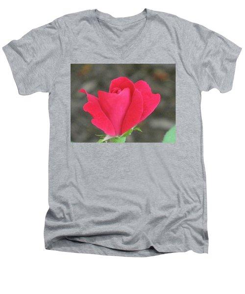 Misty Red Rose Men's V-Neck T-Shirt by Michele Wilson