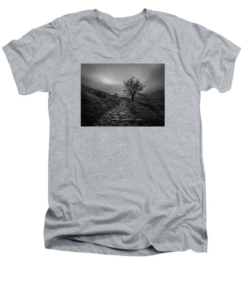 Misty Valley Men's V-Neck T-Shirt