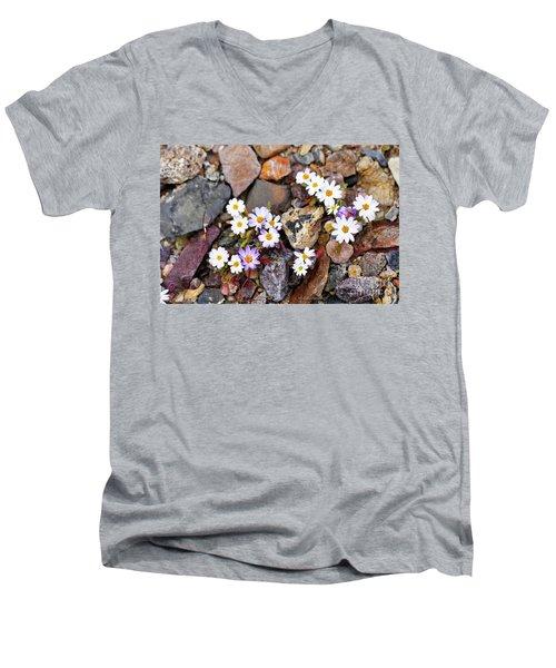Mojave Desertstar Men's V-Neck T-Shirt by Michele Penner