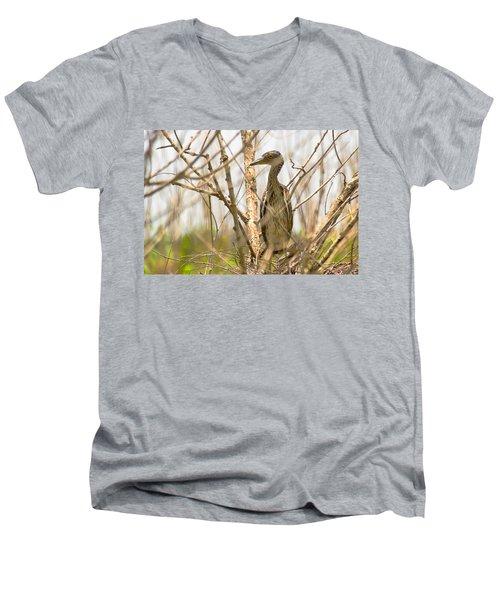 Mom And Baby Men's V-Neck T-Shirt