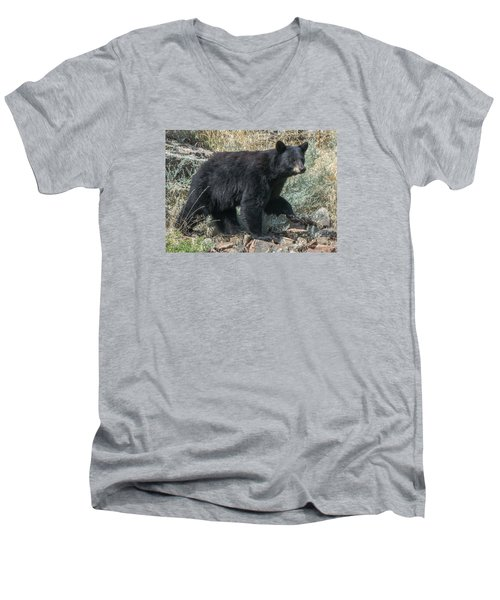 Men's V-Neck T-Shirt featuring the photograph Momma Bear Walking by Stephen  Johnson