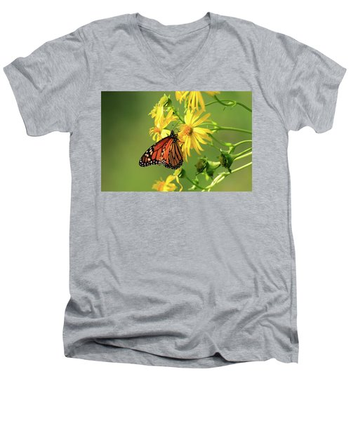 Monarch Butterfly Men's V-Neck T-Shirt by Gary Hall