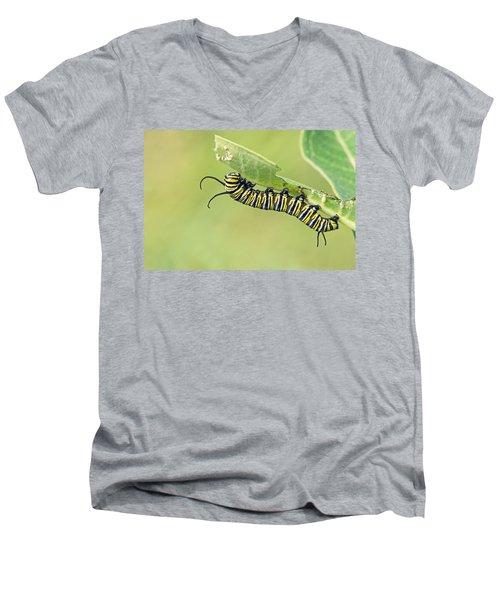 Monarch Men's V-Neck T-Shirt