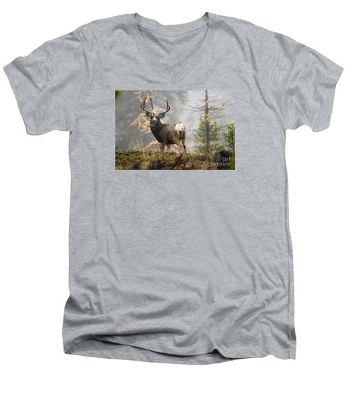 Monarch Of The Mountain Men's V-Neck T-Shirt