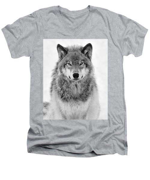 Monotone Timber Wolf  Men's V-Neck T-Shirt by Tony Beck