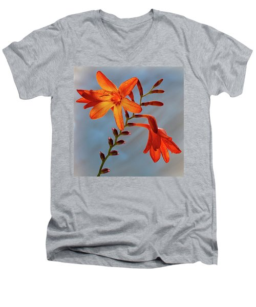 Montbretia 1 Men's V-Neck T-Shirt