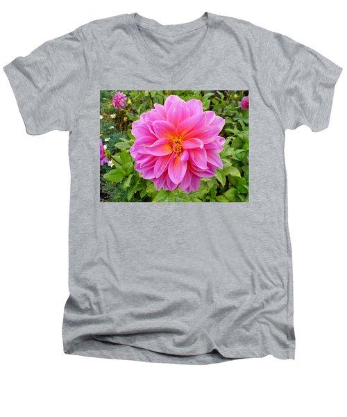 Monterey Pink Men's V-Neck T-Shirt