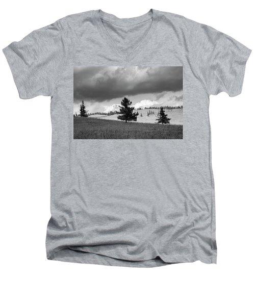 Moody Meadow, Tsenkher, 2016 Men's V-Neck T-Shirt