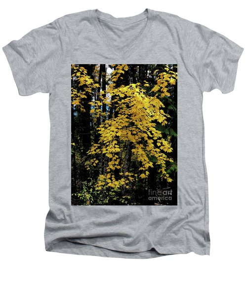 Moon Maple 2 Men's V-Neck T-Shirt