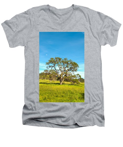 Moon Rising Meadow With Wild Flowers Men's V-Neck T-Shirt