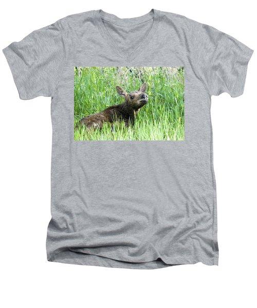 Moose Baby Men's V-Neck T-Shirt