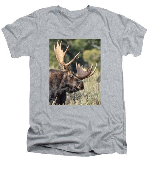 Moose Men's V-Neck T-Shirt by John Gilbert