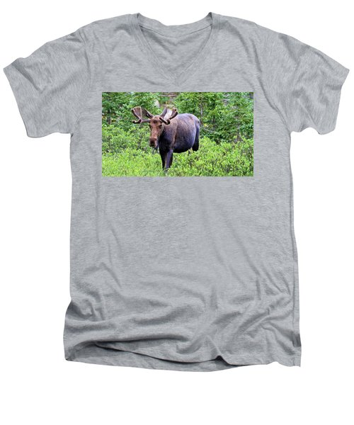 Men's V-Neck T-Shirt featuring the photograph Moose Trail by Scott Mahon
