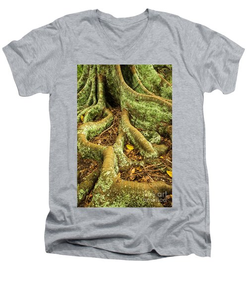 Men's V-Neck T-Shirt featuring the photograph Moreton Bay Fig by Werner Padarin