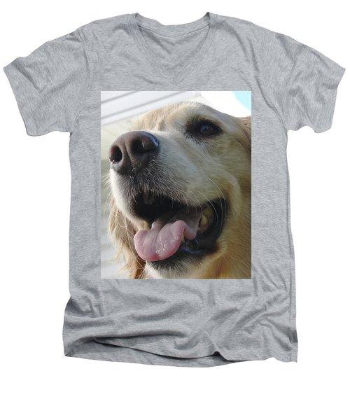 Morgie Men's V-Neck T-Shirt