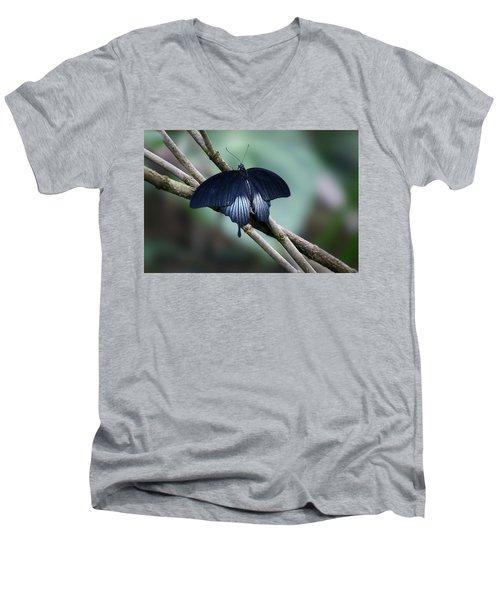 Great Mormon Butterfly Men's V-Neck T-Shirt