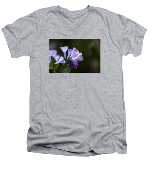 Morning Bluebells Men's V-Neck T-Shirt