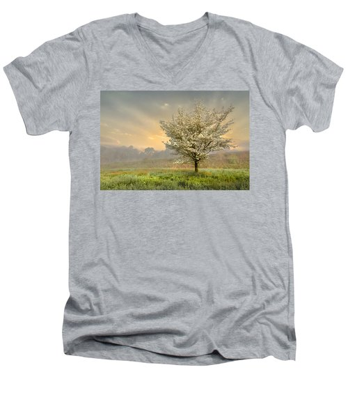 Morning Celebration Men's V-Neck T-Shirt
