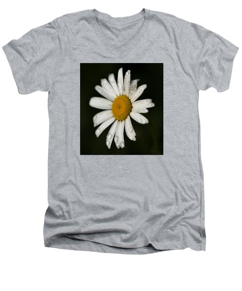 Morning Daisy Men's V-Neck T-Shirt by Dan Hefle