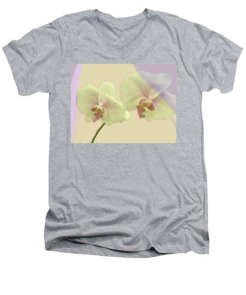 Morning Light Men's V-Neck T-Shirt by Karen Nicholson
