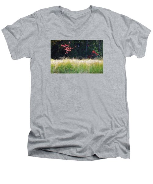 Morning Melody On Hopkins Stream Men's V-Neck T-Shirt by Joy Nichols