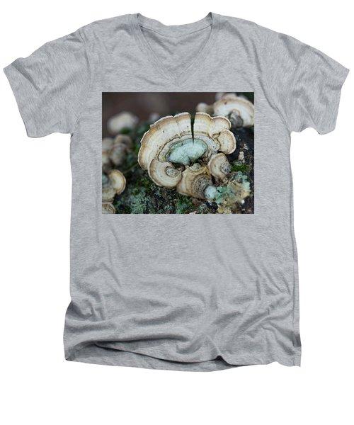 Morning Mushroom Men's V-Neck T-Shirt