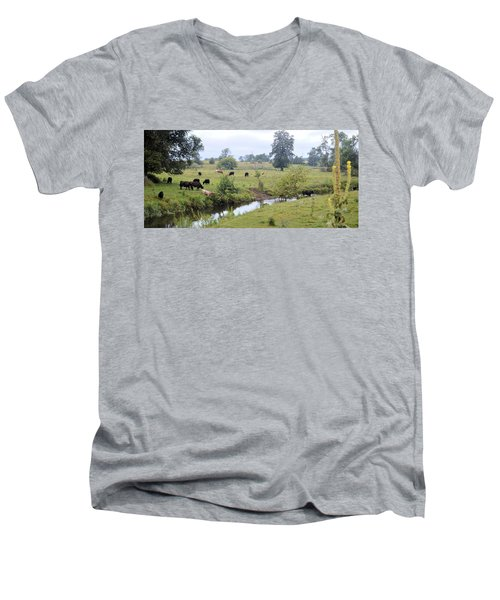 Morning On Coldwater Men's V-Neck T-Shirt