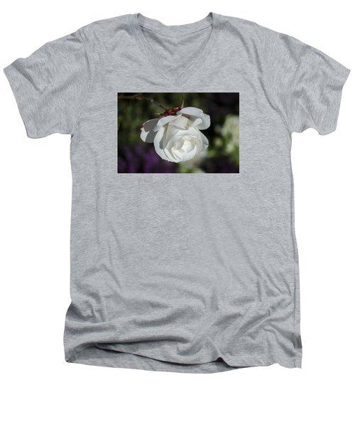 Morning Rose Men's V-Neck T-Shirt by Dan Hefle
