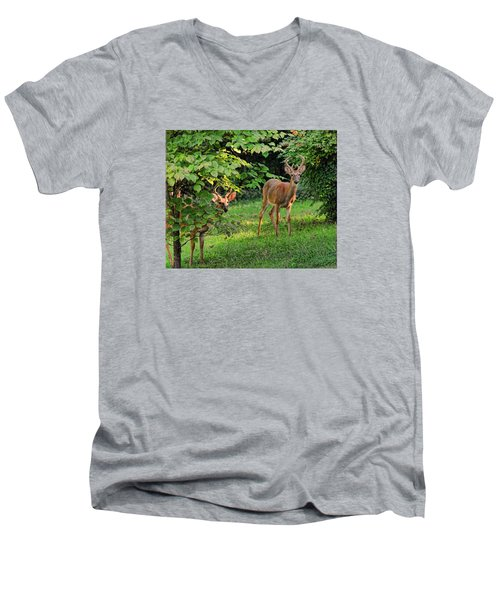 Morning Visitors Men's V-Neck T-Shirt by Rick Friedle