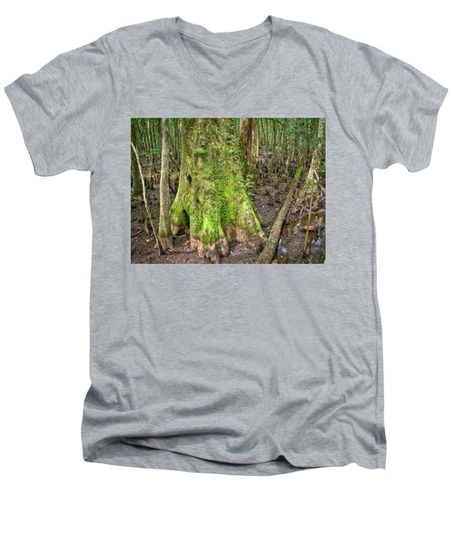 Mossy Cypress Men's V-Neck T-Shirt