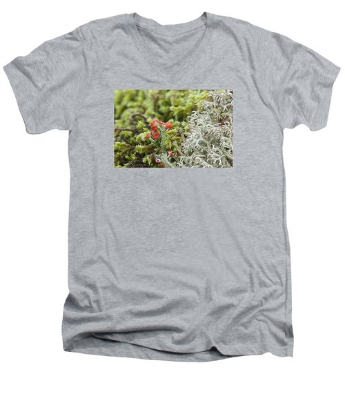 Mossy Forest Men's V-Neck T-Shirt