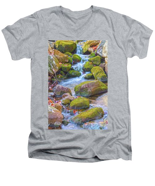 Mossy Stepping Stones Men's V-Neck T-Shirt