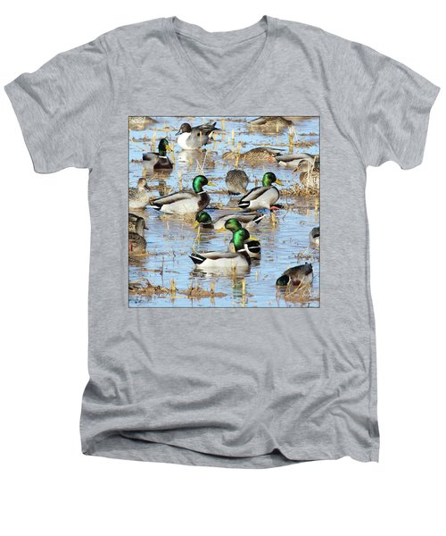 Mostly Mallards Men's V-Neck T-Shirt
